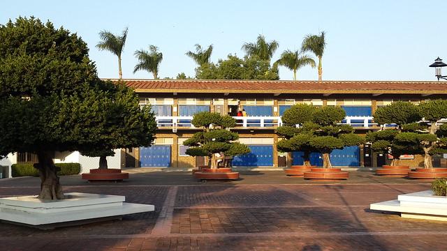 Morrison Academy Taichung