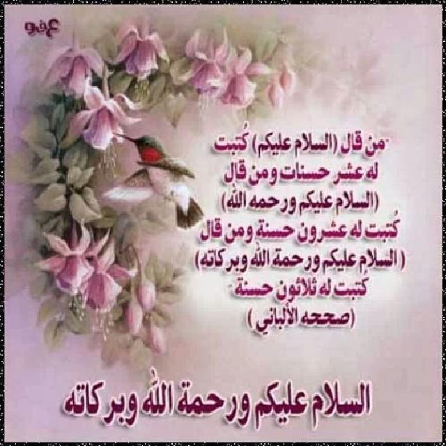 السلام عليكم ورحمة الله وبركاته Hoda Komeha Flickr