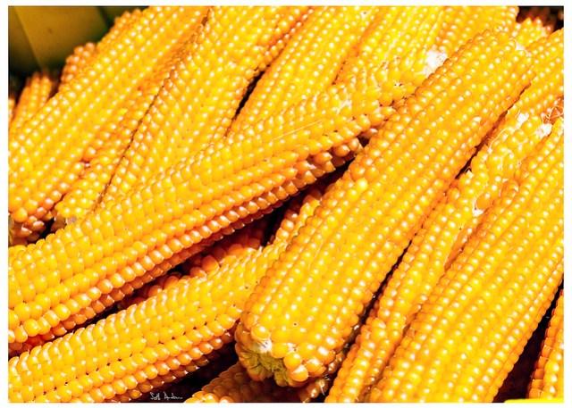 Gather Ye Popcorn While Ye May