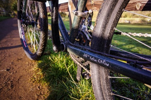Surly Disc Trucker: Chainstay Detail