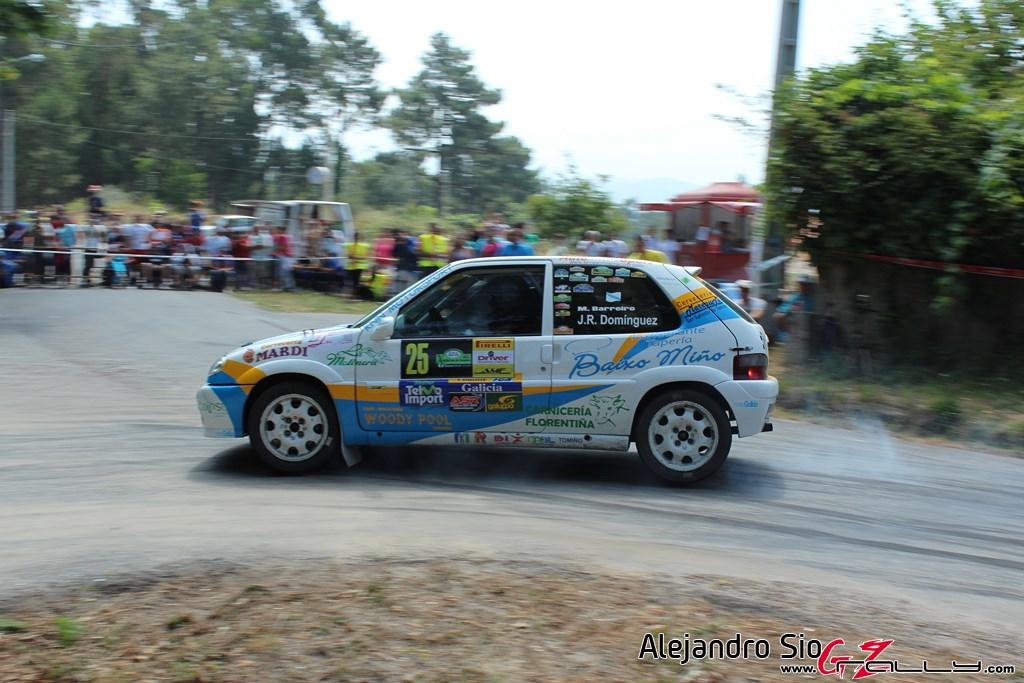 x_rally_sur_do_condado_154_20150307_1792976830