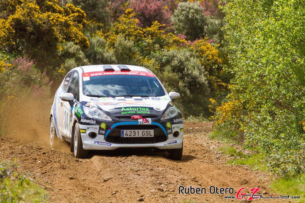rally_de_curtis_2014_-_ruben_otero_104_20150312_1144608886