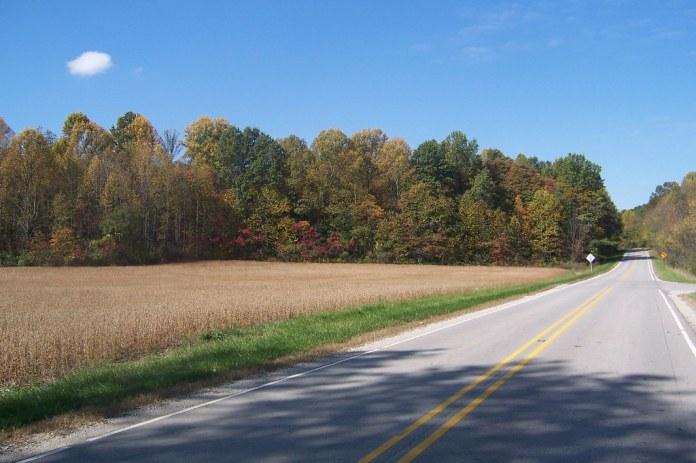 Fall on SR 42