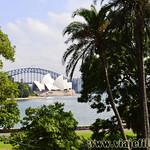 Viajefilos en Australia. Sydney  004_1