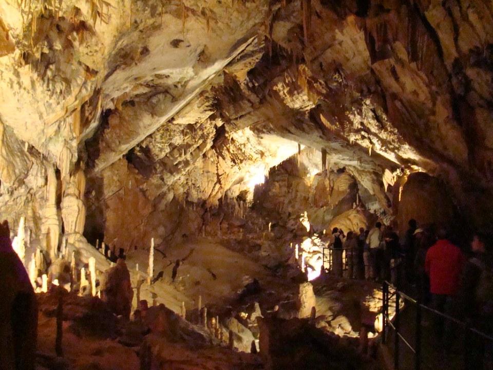 Cuevas en Postojna Eslovenia 63