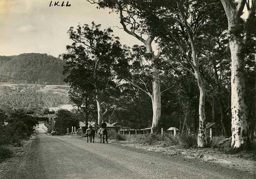 Horseriding in the Kangaroo Valley