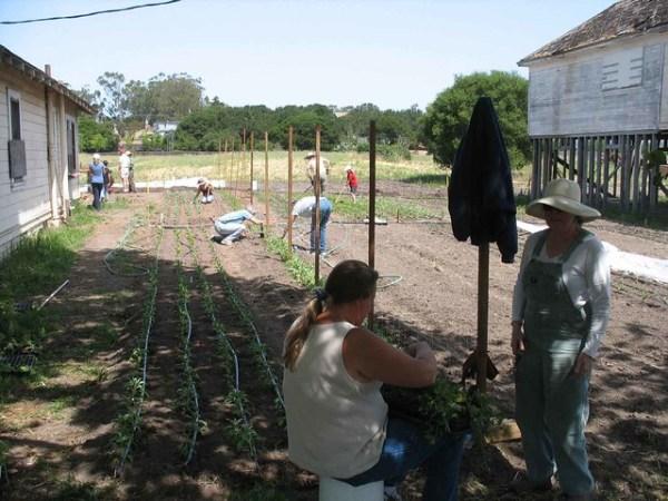 May 08 Bounty Farm Work Day
