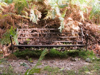 spot the bench