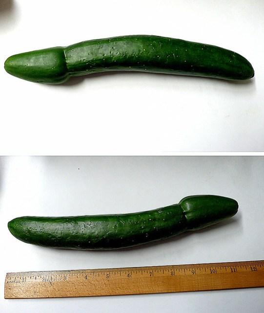 """cucumber aka """"jolly green giant"""""""