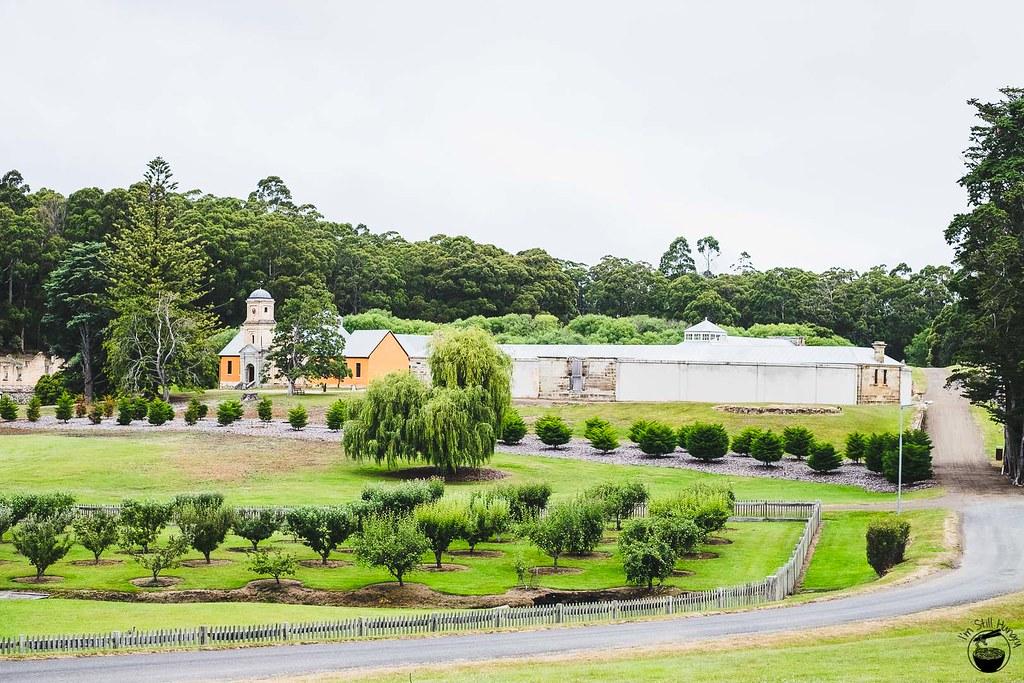 Tasmania 2016-219