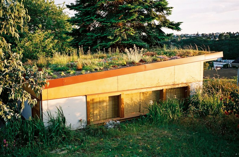 Green Roof Garage
