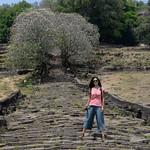 04 Viajefilos en Laos, Champasak  07