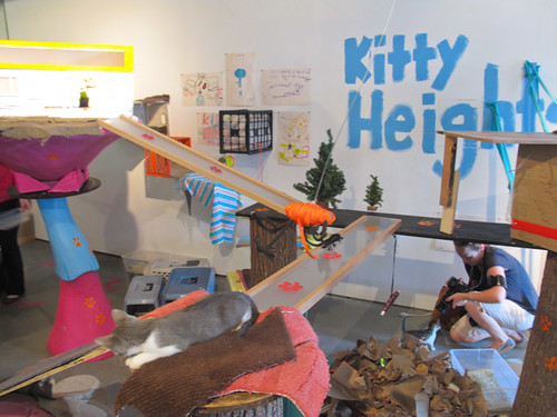 Kitty City opening-61