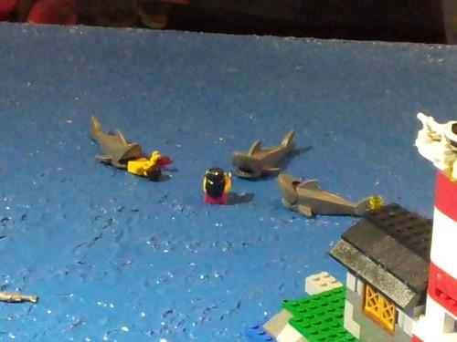 鯊魚食人事件1   simon.tk.lo   Flickr