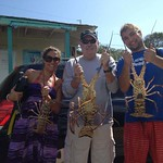 Trio Lobsters