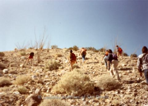 P008.086m.r.t Anza-Borrego Desert 1984: Hikers climbing a steep hill