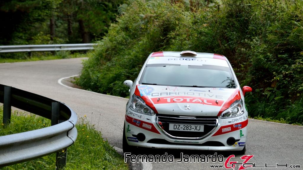 53_rally_princesa_de_asturias_2016_-_fernando_jamardo_153_20160913_1699650881