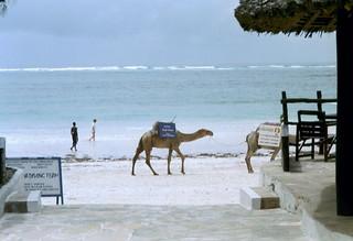 Kenia 2000 - 057