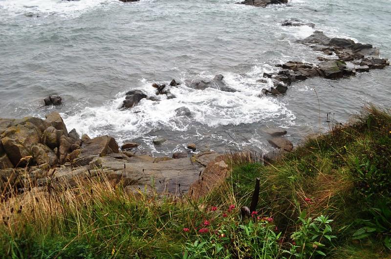 Travel to Ireland: Wild Wicklow Tour, Sandycove