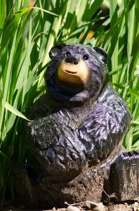 Bear in the garden