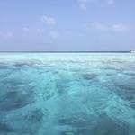 Viajefilos en Maldivas 13