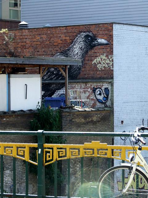 Ghent street crow 2