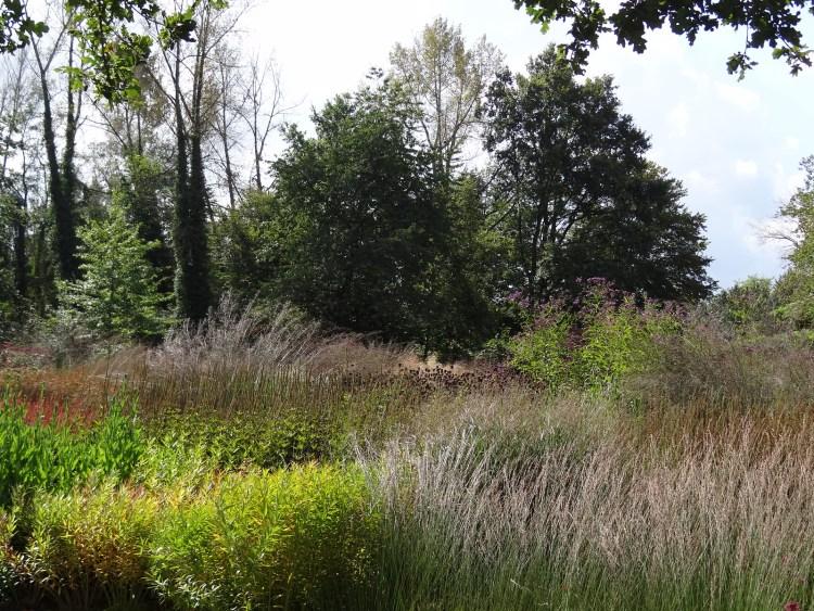 GartenKunst (Piet Oudolf) - Maximilianpark - Hamm {september 2014}