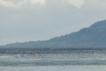 Weer terug op Guadalcanal eiland, zagen we de boot met vers opgepikte toeristen in de golven verdwijnen.