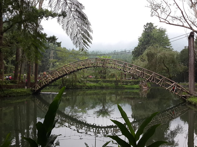 University Pond