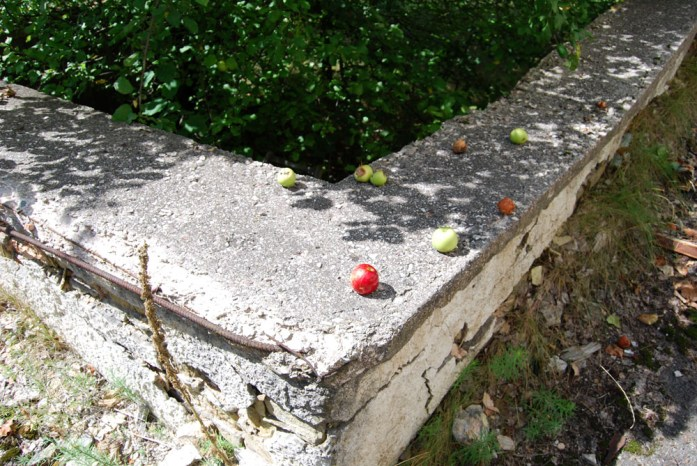 fruta radioactiva