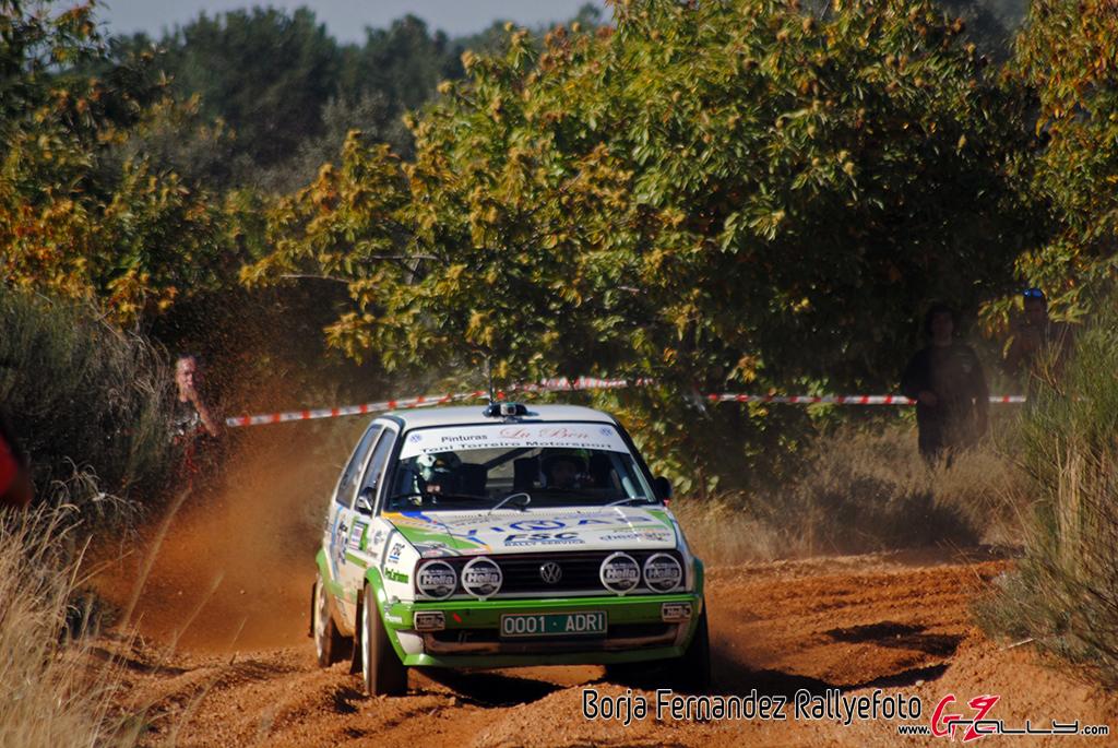 vi_rallysprint_de_tierra_de_sariegos_-_borja_fernandez_19_20161101_1136122288