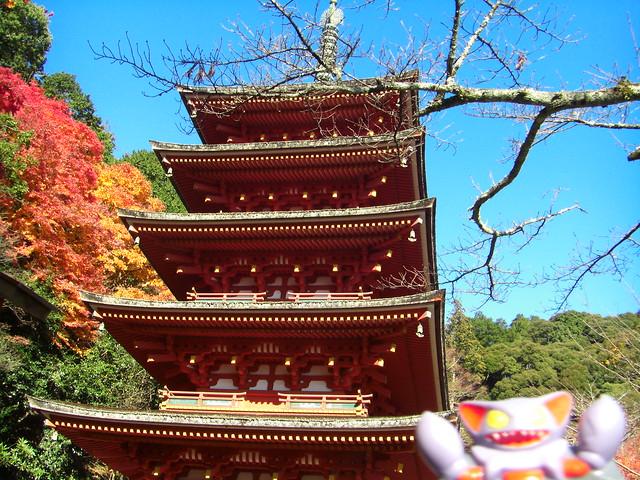 Gliscor in Sakurai, Nara 33  (Hasedera Temple)