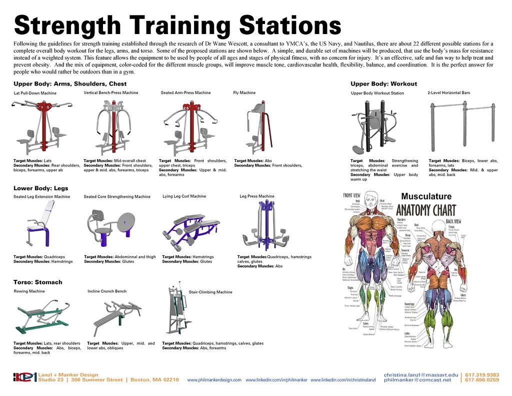 Strength Training Circuit 2