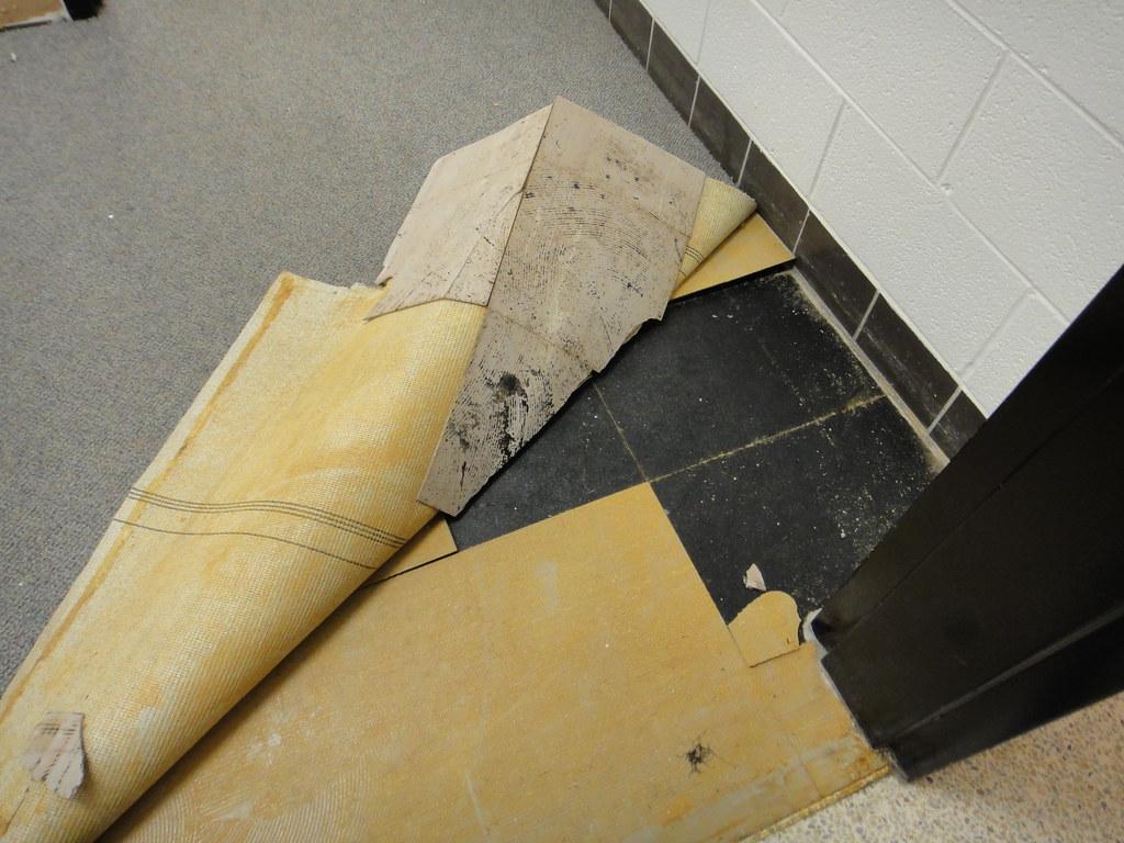 https www flickr com photos asbestos pix 4869231949