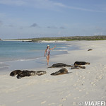 Viajefilos en La Espanola, Galapagos 091