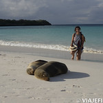 Viajefilos en La Espanola, Galapagos 079