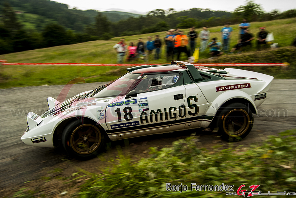 Rally_AsturiasHistorico_BorjaFernandez_17_0012