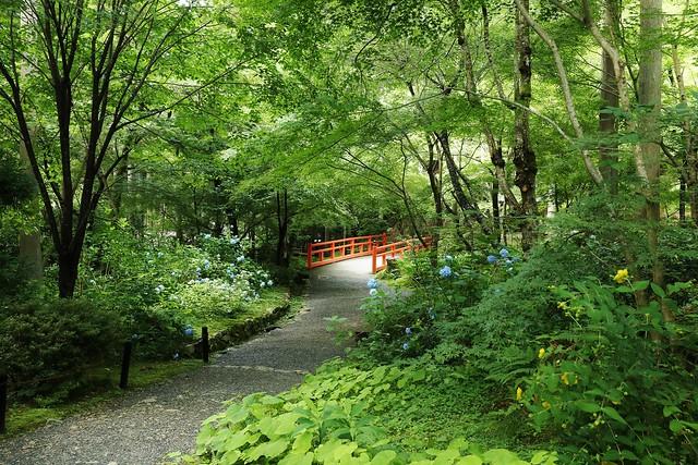 A Little Bridge / Kyoto Sanzen-in
