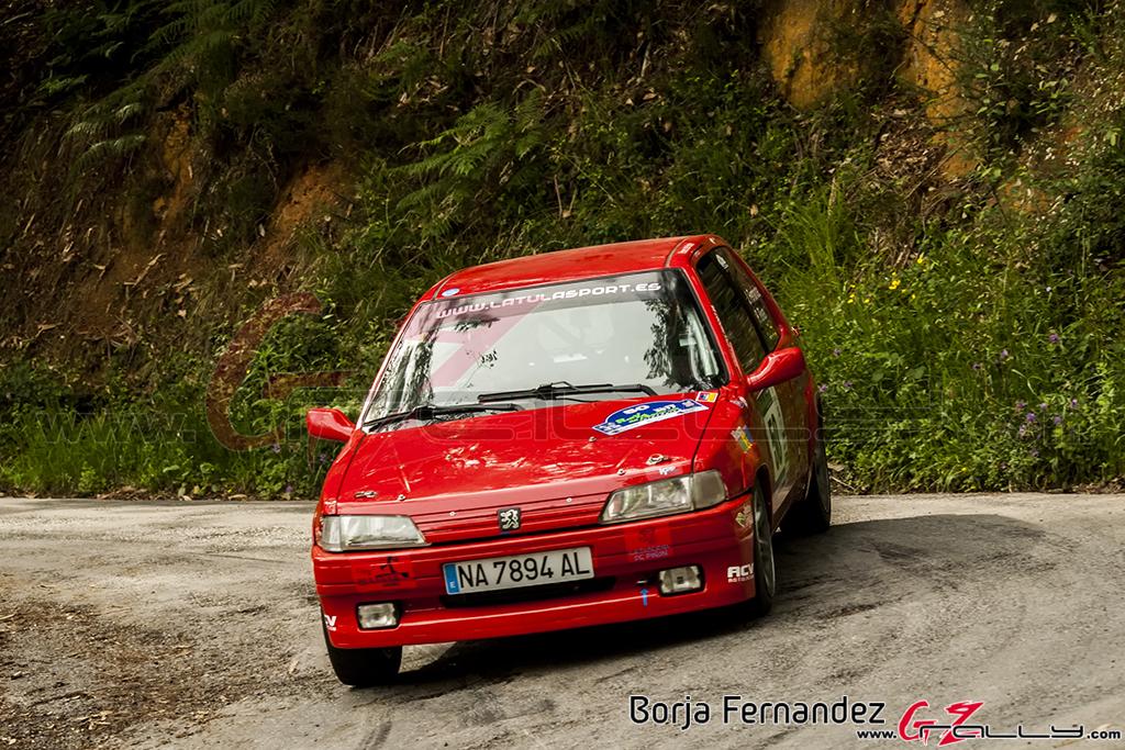 Rally_AsturiasHistorico_BorjaFernandez_17_0038