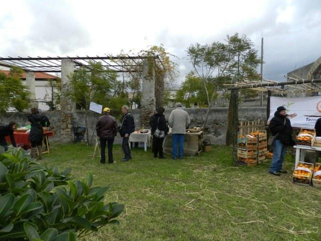 20120108_primo_mercatino_gas_magnolia-19