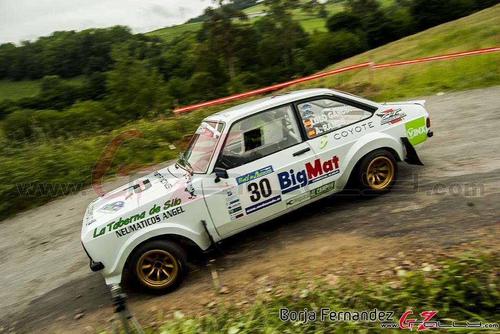 Rally_AsturiasHistorico_BorjaFernandez_17_0029