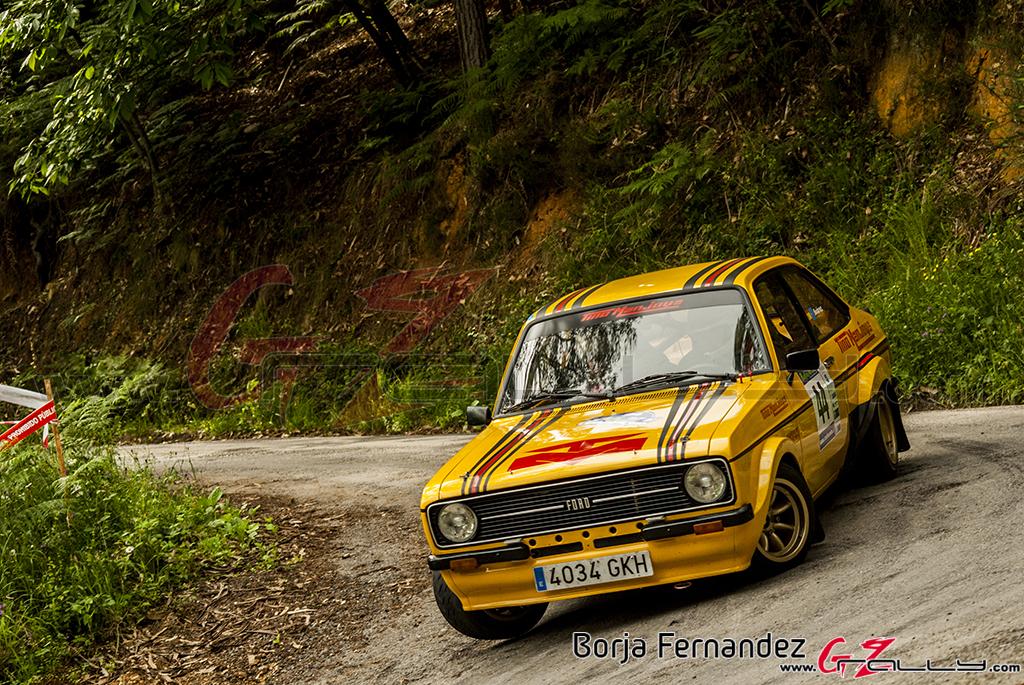 Rally_AsturiasHistorico_BorjaFernandez_17_0035