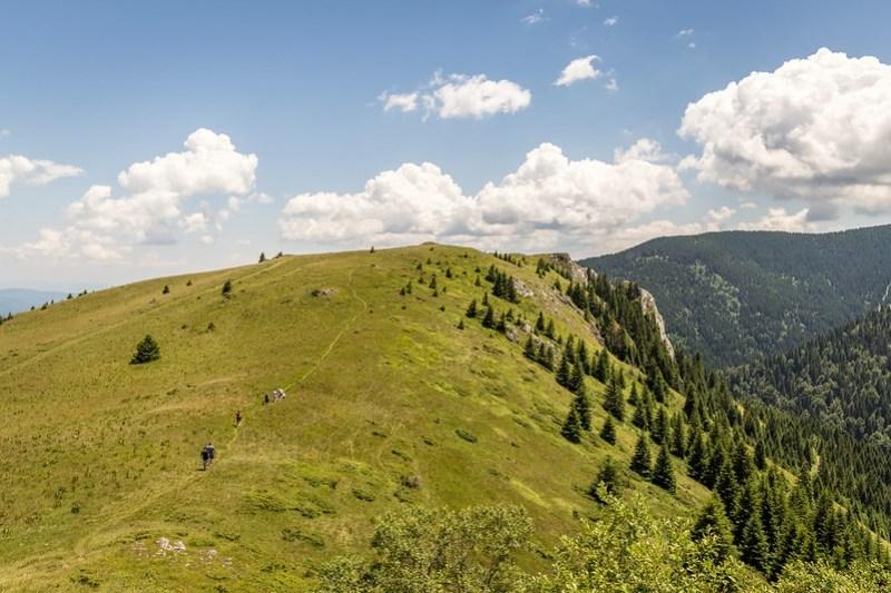 Enjoy Hiking and Fresh Air