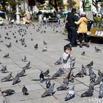 Viajefilos en la Paz, Bolivia 066