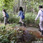 Viajefilos en la Amazonia, Peru 059