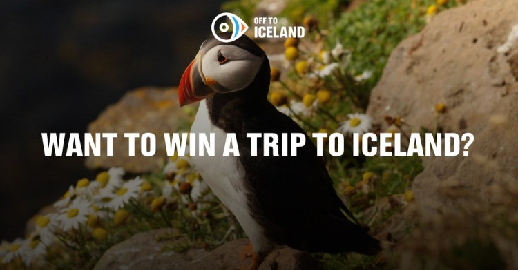 Off To Iceland contest