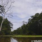 Viajefilos en la Amazonia, Peru 085