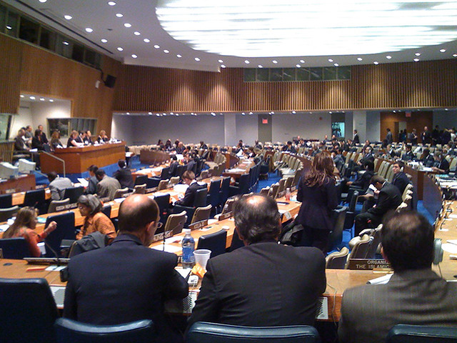 Fourth Committee, 2008