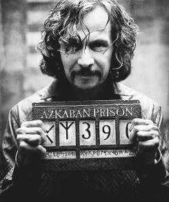 Sirius Black. | Aqueles que nos amam nunca nos deixam de ver ...