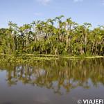 Viajefilos en la Amazonia, Peru 151